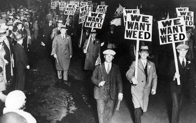 Marijuana and Modern History