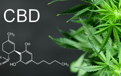 CBD: What Is It And What Are The Benefits?