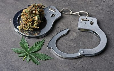 The State of Cannabis Conviction Expungement