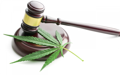 Is It Time to Start Looking at Federal Marijuana Legalization?