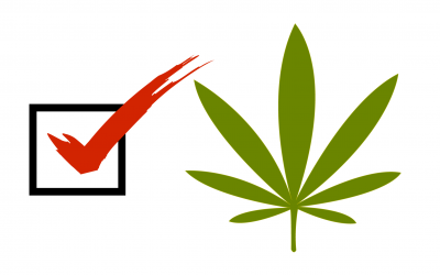 Cannabis Initiatives on the Ballot in 2020